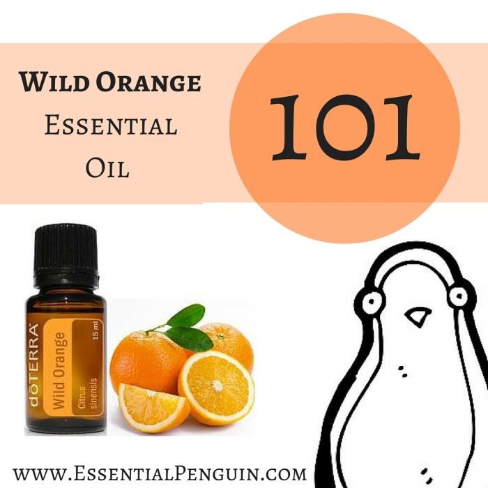 Lemon Essential Oil (6)